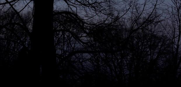 sic31-notturno-02